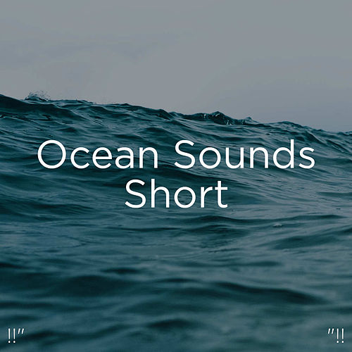 !!' Ocean Sounds Short '!! by Ocean Sounds (1)