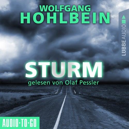 Sturm (Gekürzt) von Wolfgang Hohlbein