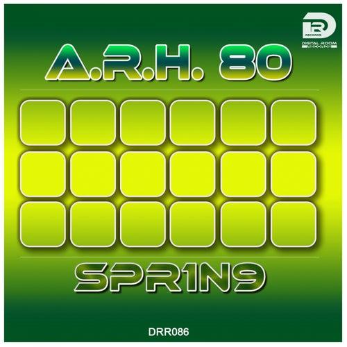 Spr1n9 von A.R.H.80