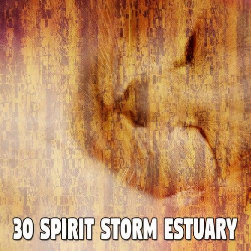 30 Spirit Storm Estuary de Relaxing Rain Sounds