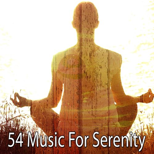 54 Music for Serenity by Music For Meditation