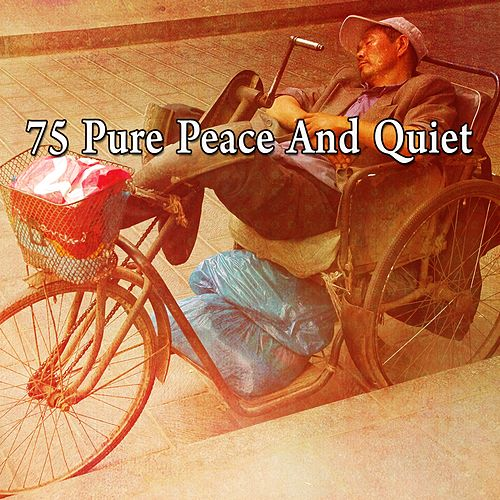 75 Pure Peace and Quiet by Relaxing Spa Music