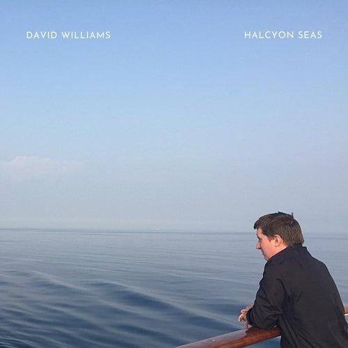 Halcyon Seas de David Williams
