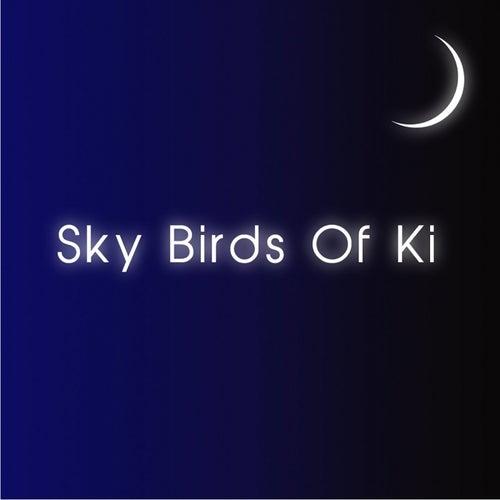 Sky Birds Of Ki EP by The Forgotten Man