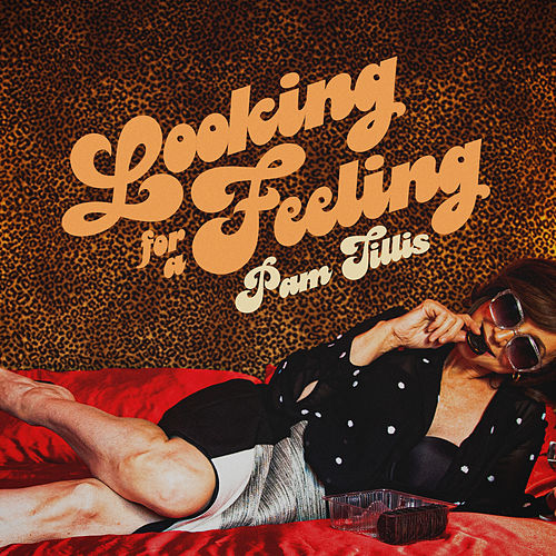 Looking for a Feeling by Pam Tillis