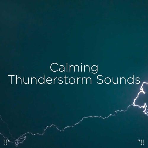 !!' Calming Thunderstorm Sounds '!! de Thunderstorm Sound Bank
