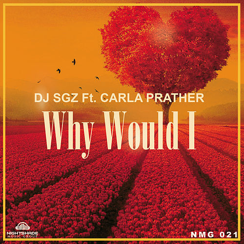 Why Would I by DJ Sgz