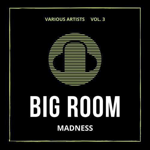 Big Room Madness, Vol. 3 de Various Artists