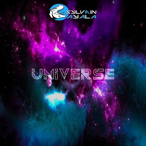 Universe by Sylvain AYALA