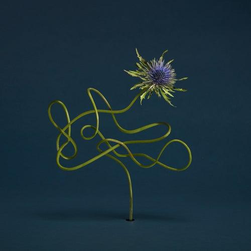 L'autre hémisphère by Julien Belliard