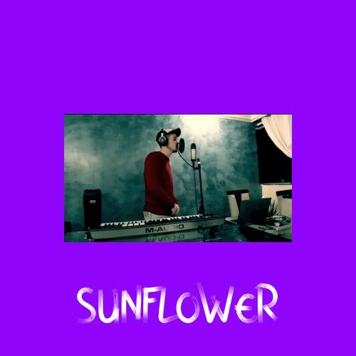 Sunflower de Aleksy Colen