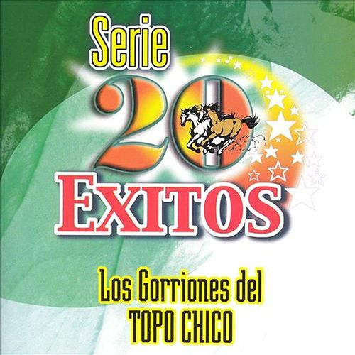 Serie 20 Exitos von Various Artists