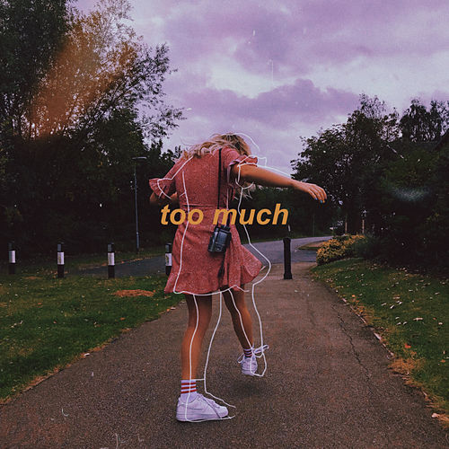 too much by Riley Biederer
