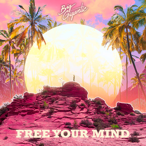 Free Your Mind by Big Gigantic