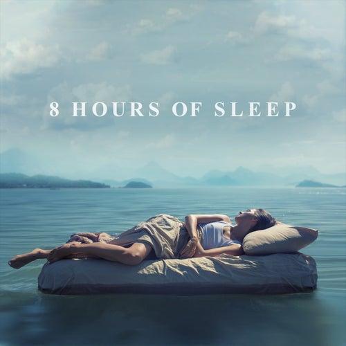 8 Hours of Sleep von Various Artists