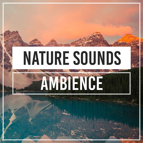 Nature Sounds Ambience by Nature Sounds (1)