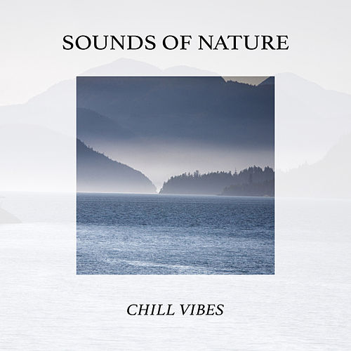 Sounds Of Nature: Chill Vibes by Sounds Of Nature