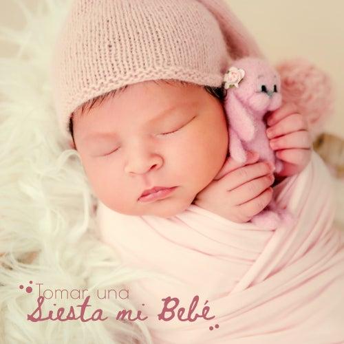 Tomar una Siesta mi Bebé: Música Relajante, Música para Dormir Bebé, Quedarse Dormido, Sonido de la Naturaleza, Armonía de los Sonidos de Musica Para Dormir Bebes