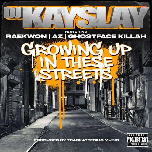 Growing Up In These Streets (feat. Raekwon, AZ & Ghostface Killah) de DJ Kayslay