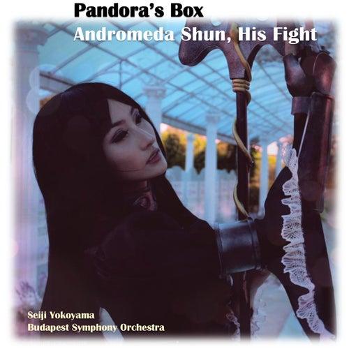 Pandora's Box, Andromeda Shun His Fight by Seiji Yokoyama