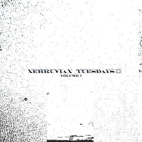Nehruvian Tuesdays: Vol, 1 by Bishop Nehru