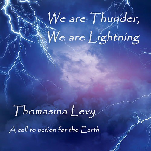 We Are Thunder, We Are Lightning van Thomasina Levy