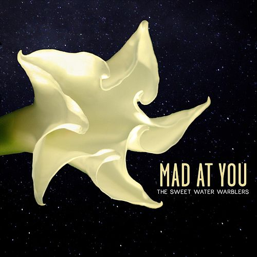 Mad at You (feat. Rachael Davis, May Erlewine & Lindsay Lou) von Sweet Water Warblers