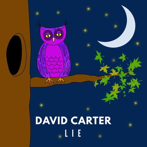 Lie von David Carter