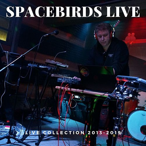 Spacebirds (Live) by The Spacebirds