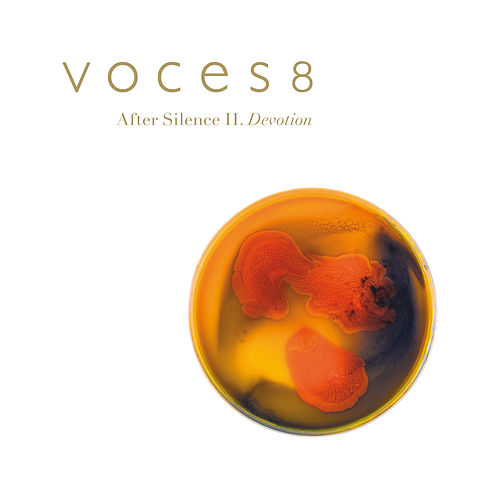 After Silence II. Devotion von Voces8