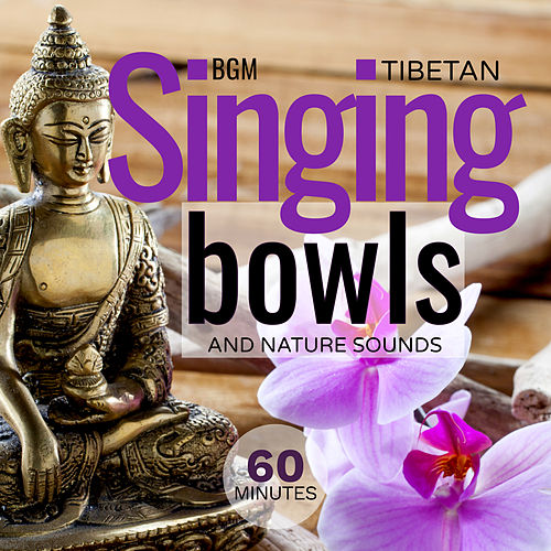 Tibetan Singing Bowls and Nature Sounds de Giacomo Bondi