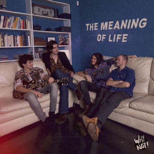 The Meaning of Life by Why Not