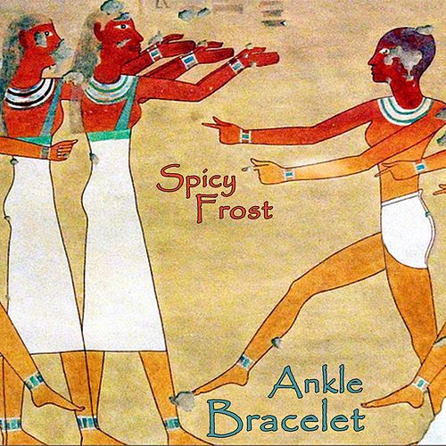 Ankle Bracelet by Spicy Frost