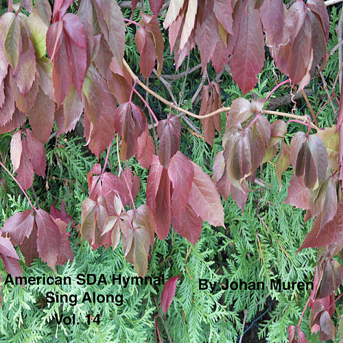 American Sda Hymnal Sing Along Vol. 14 by Johan Muren
