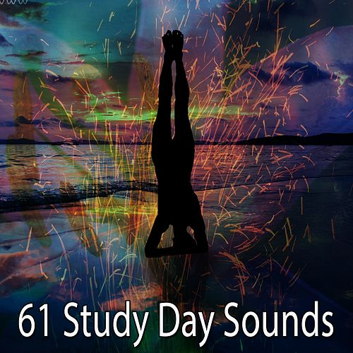 61 Study Day Sounds de Zen Meditation and Natural White Noise and New Age Deep Massage