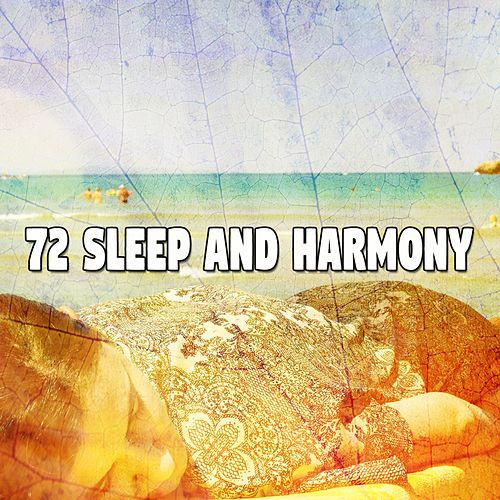 72 Sleep and Harmony de White Noise Babies