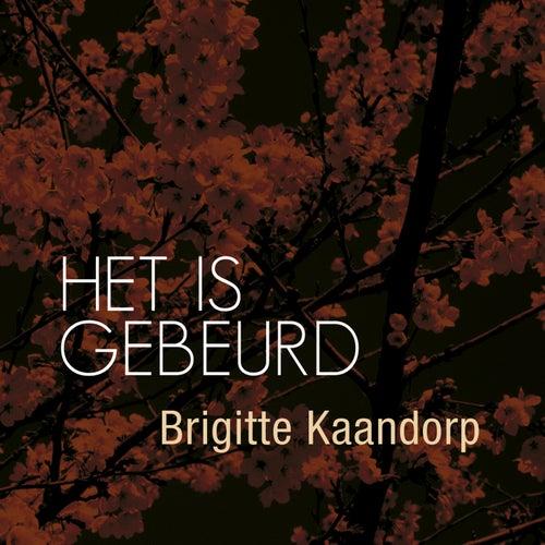 Het is gebeurd di Brigitte Kaandorp