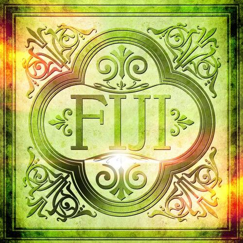 Fiji von Fiji