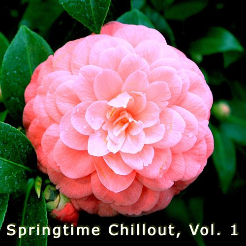 Springtime Chillout de Various Artists