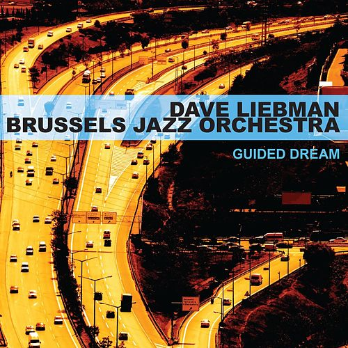 Guided Dream de Dave Liebman