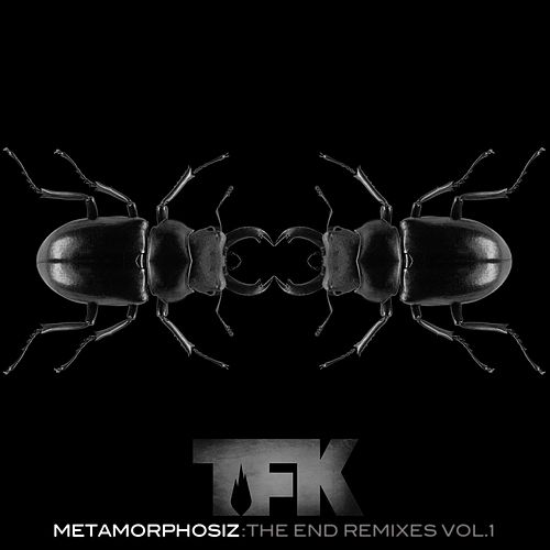 Metamorphosiz: The End (Remixes, Vol. 1) de Thousand Foot Krutch