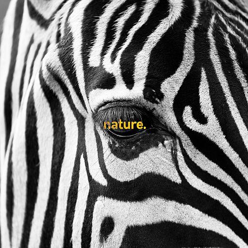 Nature. by Arca