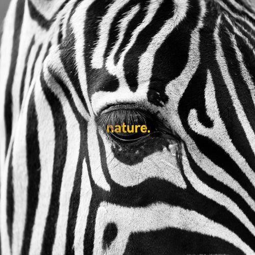 Nature. von Arca