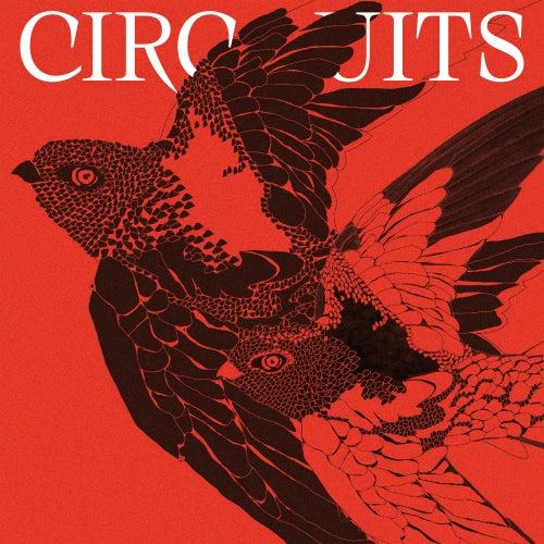 Circuits (Schaltkreise Version) by Frieder Nagel