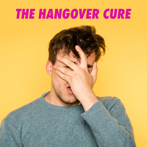 The Hangover Cure de Various Artists