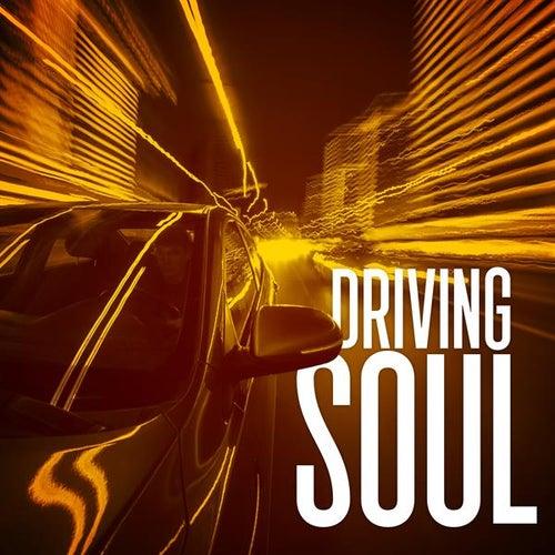 Driving Soul de Various Artists