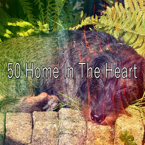50 Home In the Heart de Lullaby Land