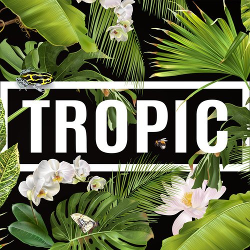 Tropic by Various Artists