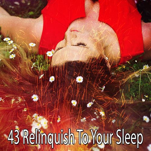 43 Relinquish to Your Sleep de White Noise Babies
