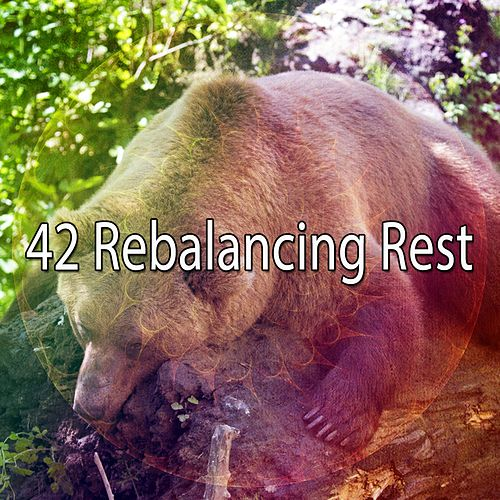 42 Rebalancing Rest von Best Relaxing SPA Music